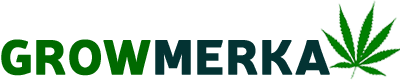logo growmerka 2